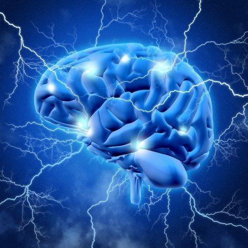 Cerv- cerveau 3d-eclaircissement