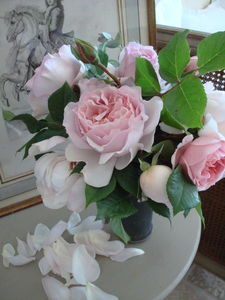 fred_roses_chine01