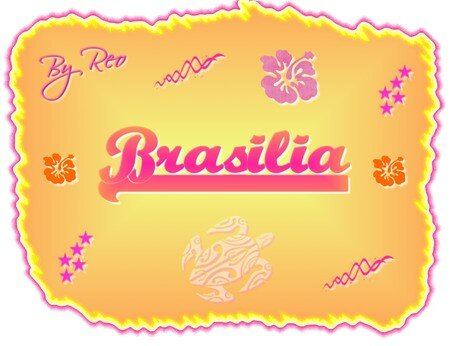 Etiquette_brasilia