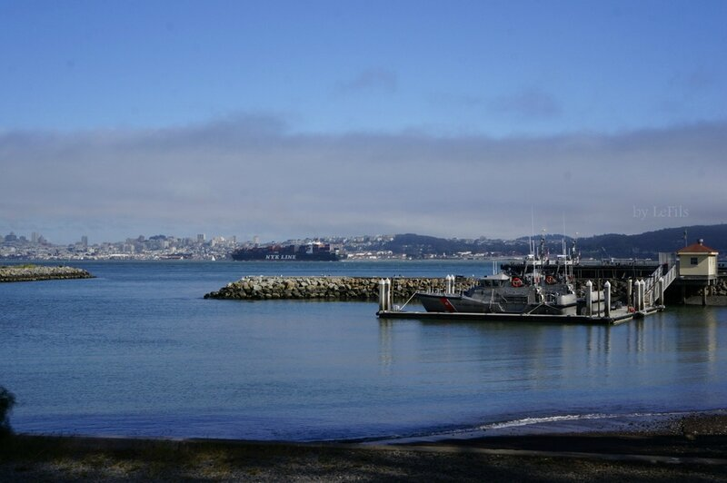 san francisco bay 19