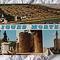 Aigues Mortes 2 - cité de St Louis