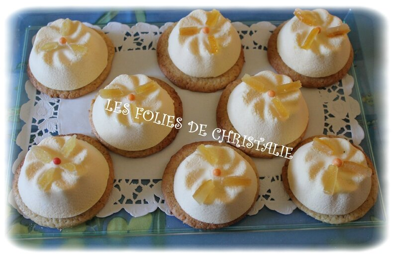 Mousse agrumes 14