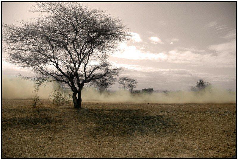 Pays Masaï