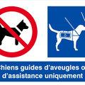Refus d'accès pour un chien guide