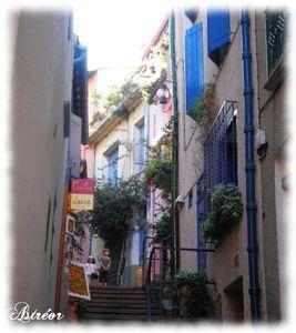 Collioure_24