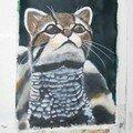 Btk le chat sauvage de Nathalie