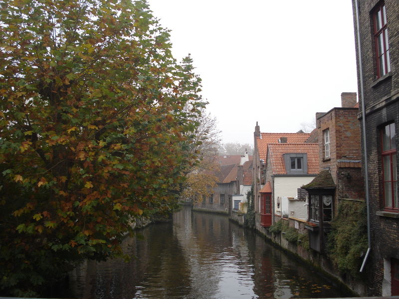Bruges Nov 2011 102
