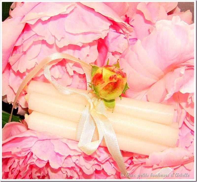 Roses, pivoines et seringat (3)