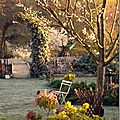 Windows-Live-Writer/jardin_B395/DSCF3442_thumb