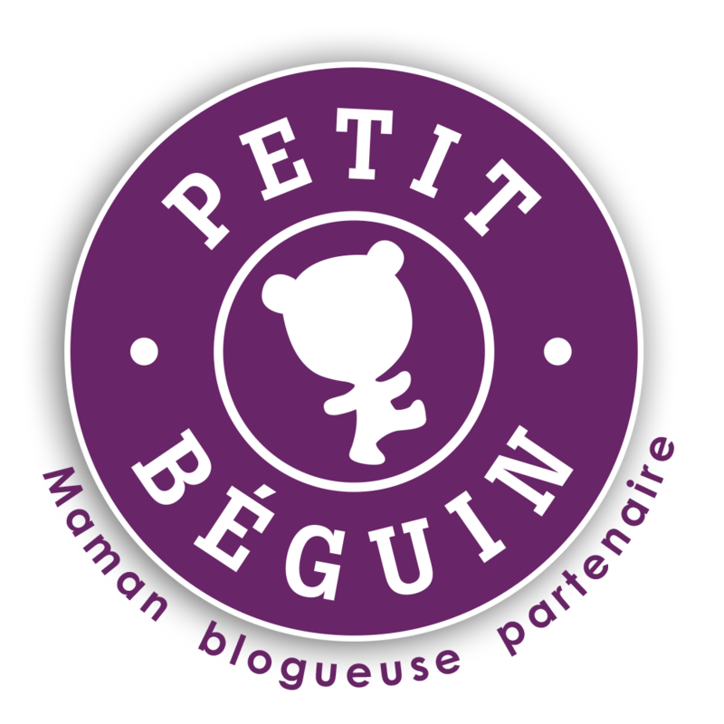 Macaron-Petit-Béguin-Blogueuses