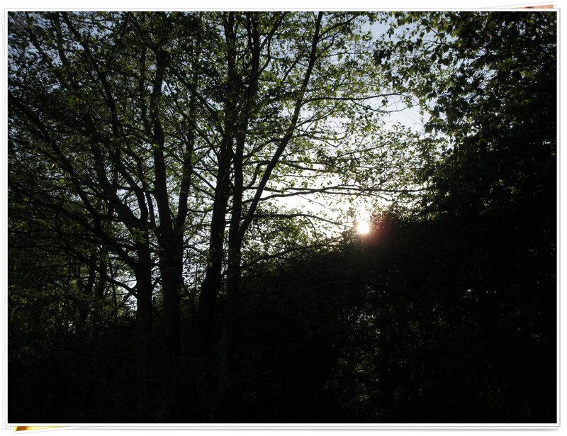 le lac du Drennec (11)