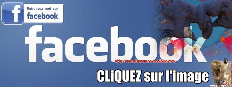 - Facebook-Logo