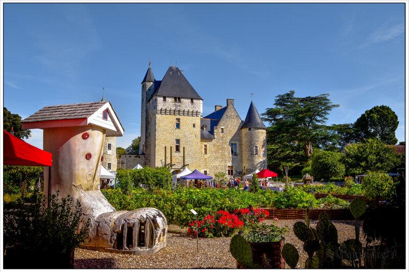 Château du RIVAU (5)