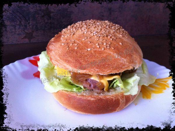 Hamburger steack oignon 29 juin (7b)