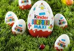 chasse-oeufs-kinder[1]