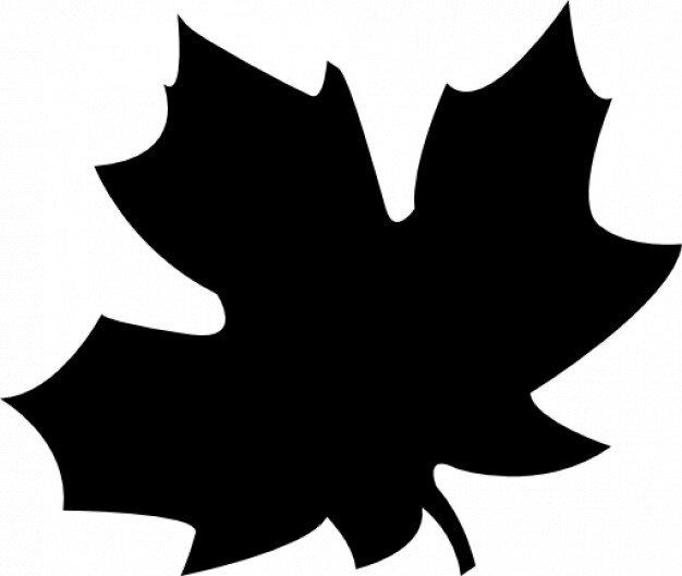 feuille-d-39-automne_318-10328