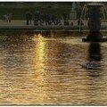 Bain de soleil au luxembourg