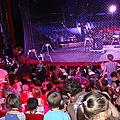Sortie cirque de l'école Rotenberg et Olympiade (16-17/06/2011)