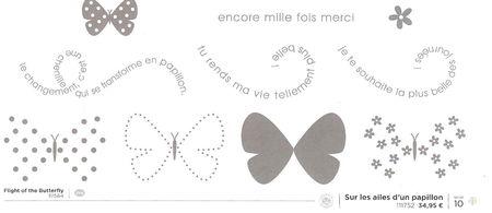 Sur_les_ailes_d_un_papillon
