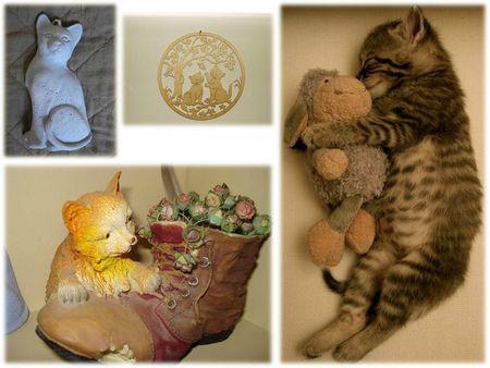 COLLEC CATS (36)