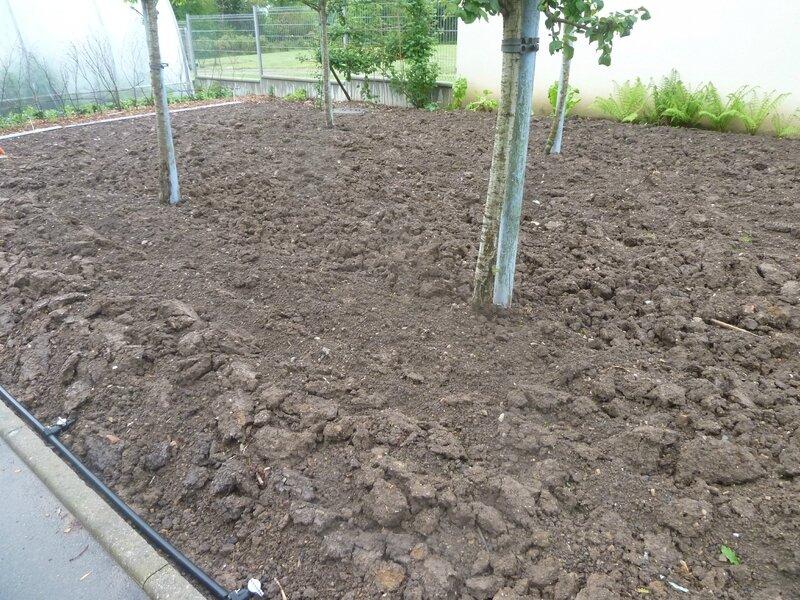 1-terre mouillée