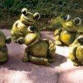 mes grenouilles