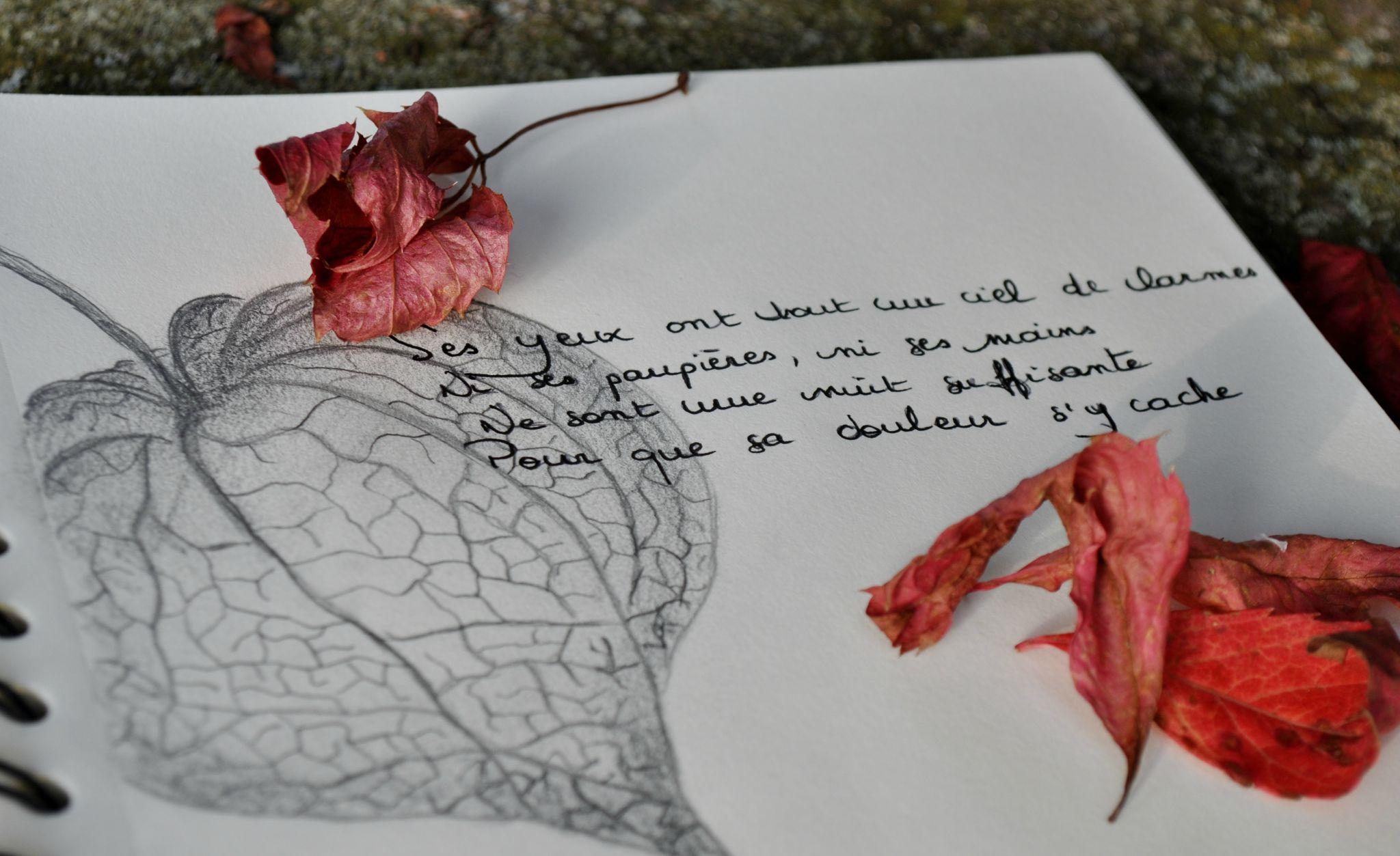Cahier De Citations N 13 Coeur Cannelle