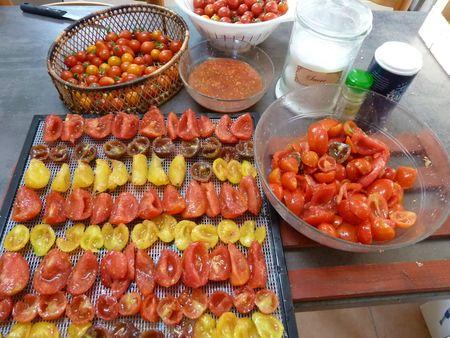 tomates séchées 2 (2)