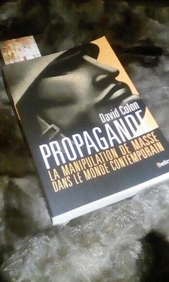 Propagande la manipulation de masse dans le monde contemporain