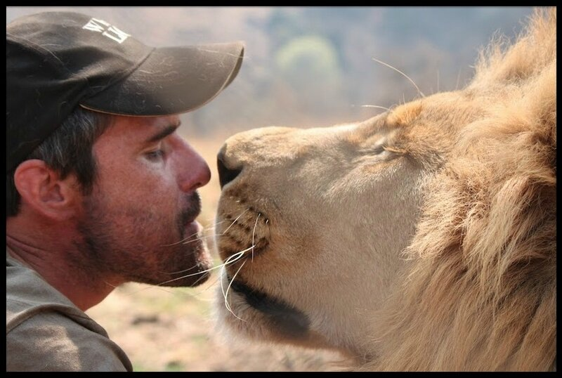 kevin richardson le roi lion