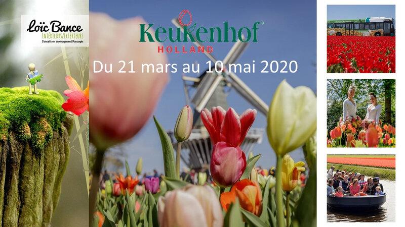 Paysagiste-Pays-Basque-Paysagiste-Landes-Loic-BANCE-Agenda-Keukenhof-tulipes-hollande