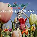 Keukenhof. paysagiste pays basque agenda 2020