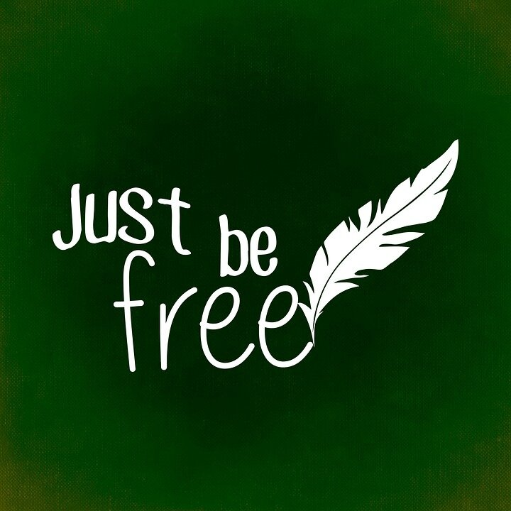 freedom-813099_960_720
