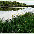 Lac Azur 25041520