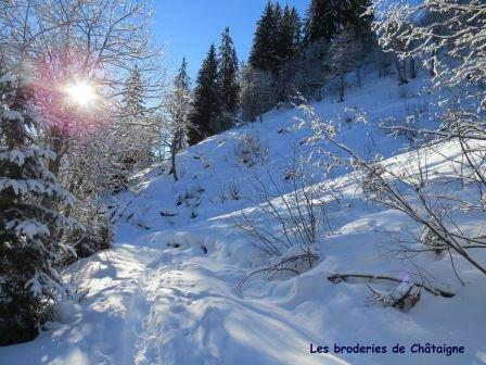 Petit Croisse Baulet - 0006