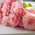 Le biscornu aux roses de mouny, 21e inscrite