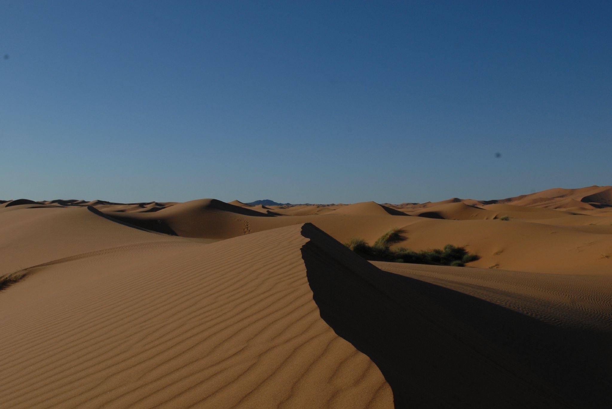 maroc 2011 (319)