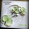 Carte orchidée grimpante
