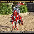 Les chevaliers de saint-michel de la province du poitou, depuis la fondation de l'ordre en 1468 jusqu'à l'ordonnance de 1665