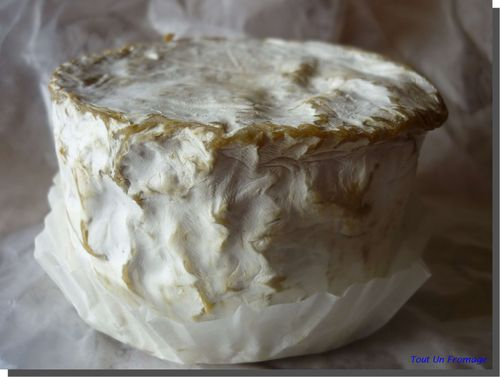 Chaource (Bourgogne)