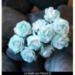 rose 2 tons turquoises 15 mm