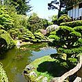 Tea Garden (74)