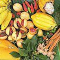 FRUITS DE L'ILE DE GRENADE