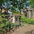jardin botanique (368).JPG