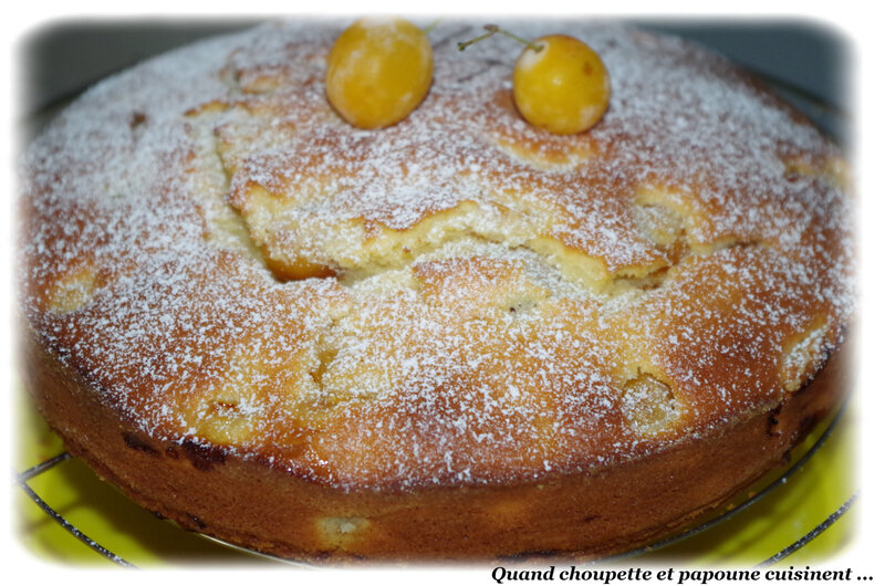gâteau yaourt à la mirabelles-6268