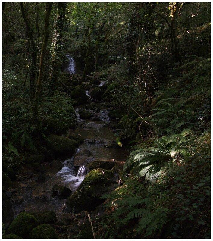 Puits enfer ruisseau bois 250915