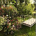 Windows-Live-Writer/jardin_D005/DSCF3865_thumb
