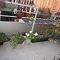 Balcon d'automne