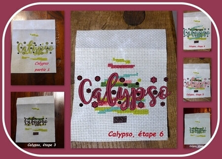 calypso_sapin coloré_col2