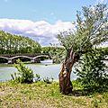 Le Pont de Tounis